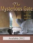 The Mysterious Gate: Yin and Yang in the Early Development of Acupuncture